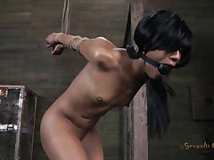 Isn't Nikki a sweet girl and hot too? She's tied, blindfolded and mouth gagged with a ball. A big black male pumps her from behind and rips Nikki's pussy before taking care of her mouth. His white buddy comes to help him punish this bitch and fucks her ass from behind too while the black one deep throats her